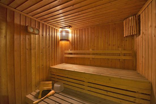 feienhaus d nemark mit sauna mieten ferienhaus d nemark. Black Bedroom Furniture Sets. Home Design Ideas